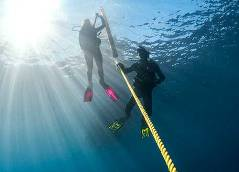 PADI Divemaster Course in Cyprus